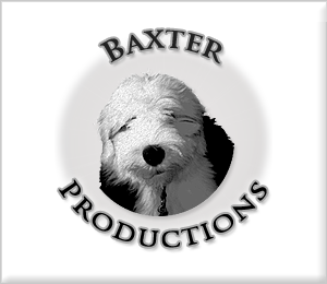 Baxter Productions Media logo 300x300